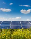 Solar Farming Panels